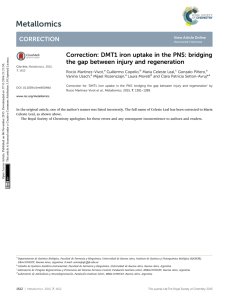 Correction: DMT1 iron uptake in the PNS: bridging the gap between