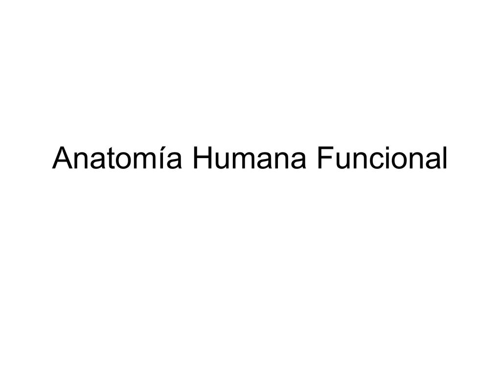 Anatomía Humana Funcional