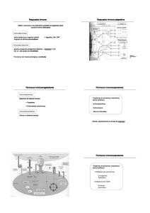 236c8c352d00 Descargar - Repositorio de Documentos Digitales