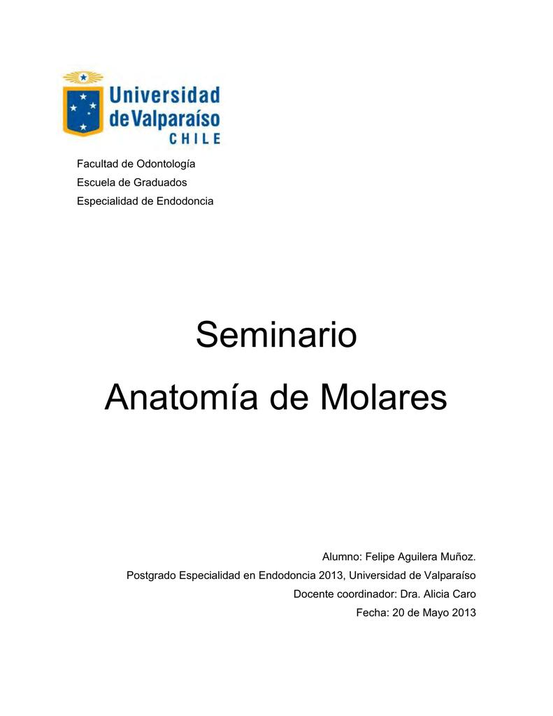 Excelente Anatomía De Un Sistema Séptico Patrón - Anatomía de Las ...
