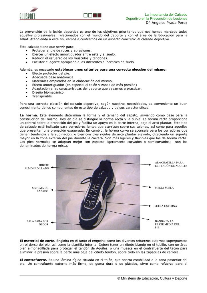Fantástico Anatomía De La Almohadilla Del Talón Ornamento - Anatomía ...