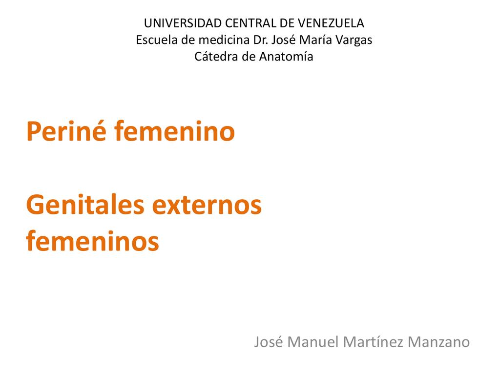 Periné femenino Genitales externos femeninos