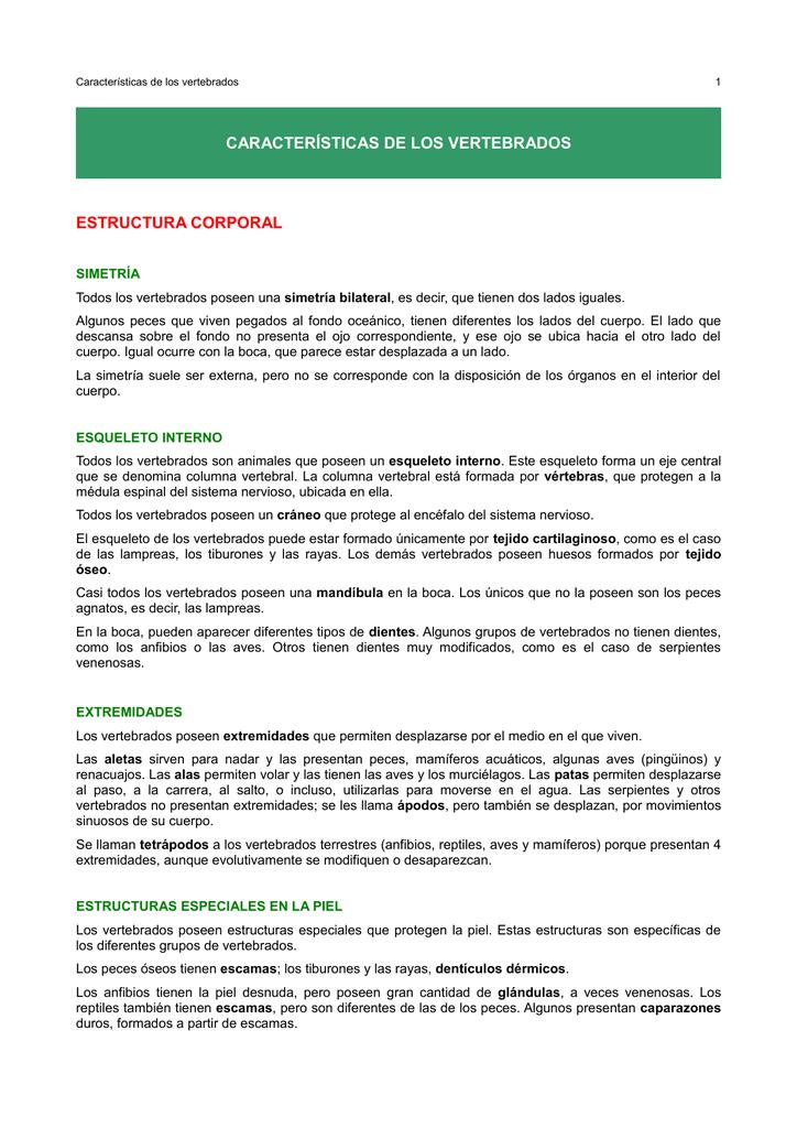 Características De Los Vertebrados Estructura Corporal