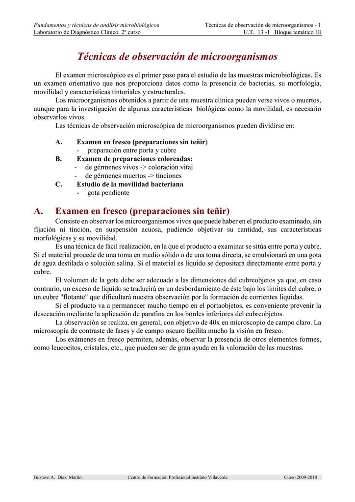 Técnicas de observación de microorganismos