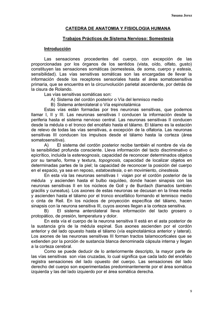 CATEDRA DE ANATOMIA Y FISIOLOGIA HUMANA