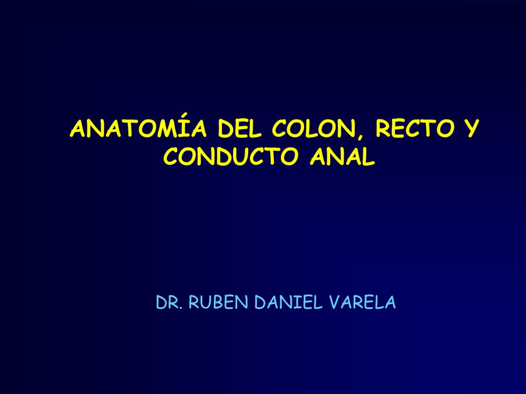 ANATOMÍA DEL COLON, RECTO Y CONDUCTO ANAL