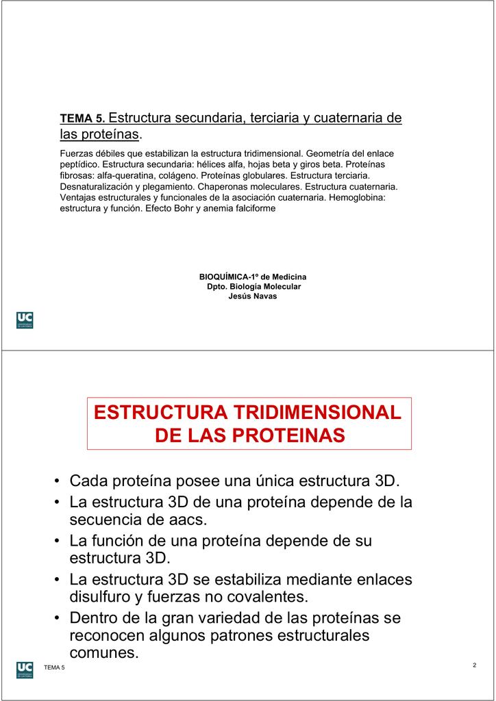 Estructura Tridimensional De Las Proteinas