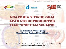 APARATO ANATOMIA PDF REPRODUCTOR FEMENINO
