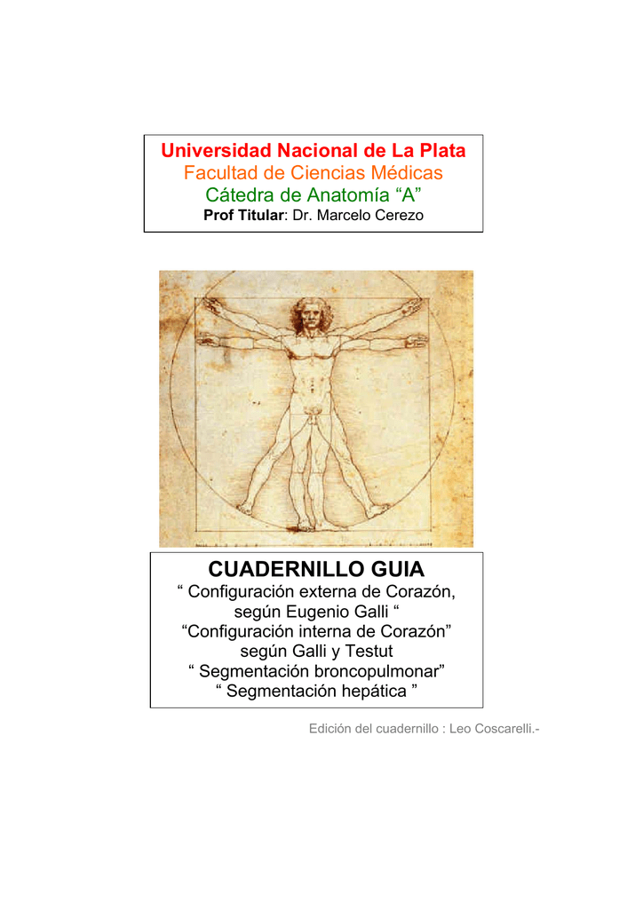 cuadernillo guia - Cátedra de Anatomía