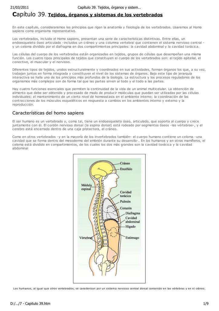 Capítulo 39. Tejidos, órganos y sistemas de los vertebrados