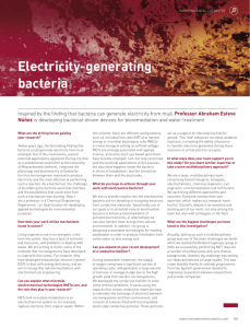 Electricity-generating bacteria