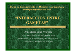 """INTERACCION ENTRE GAMETAS"""