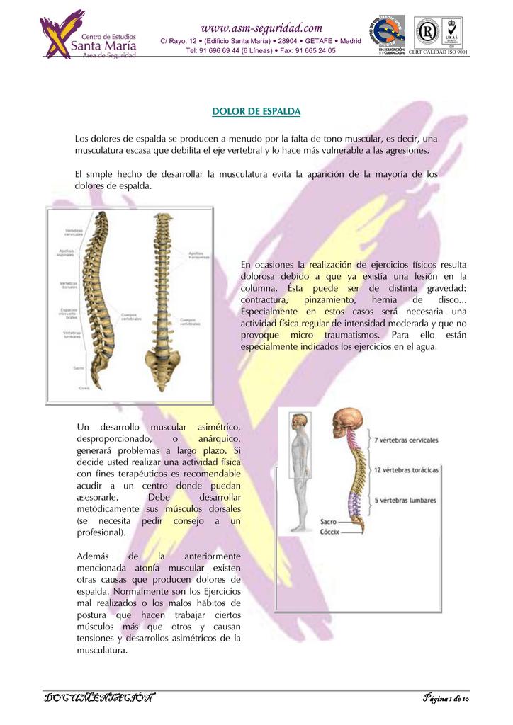 pinzamiento vertebras 5 y 6