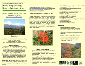 Forest Ecophysiology: from cells to ecosystems