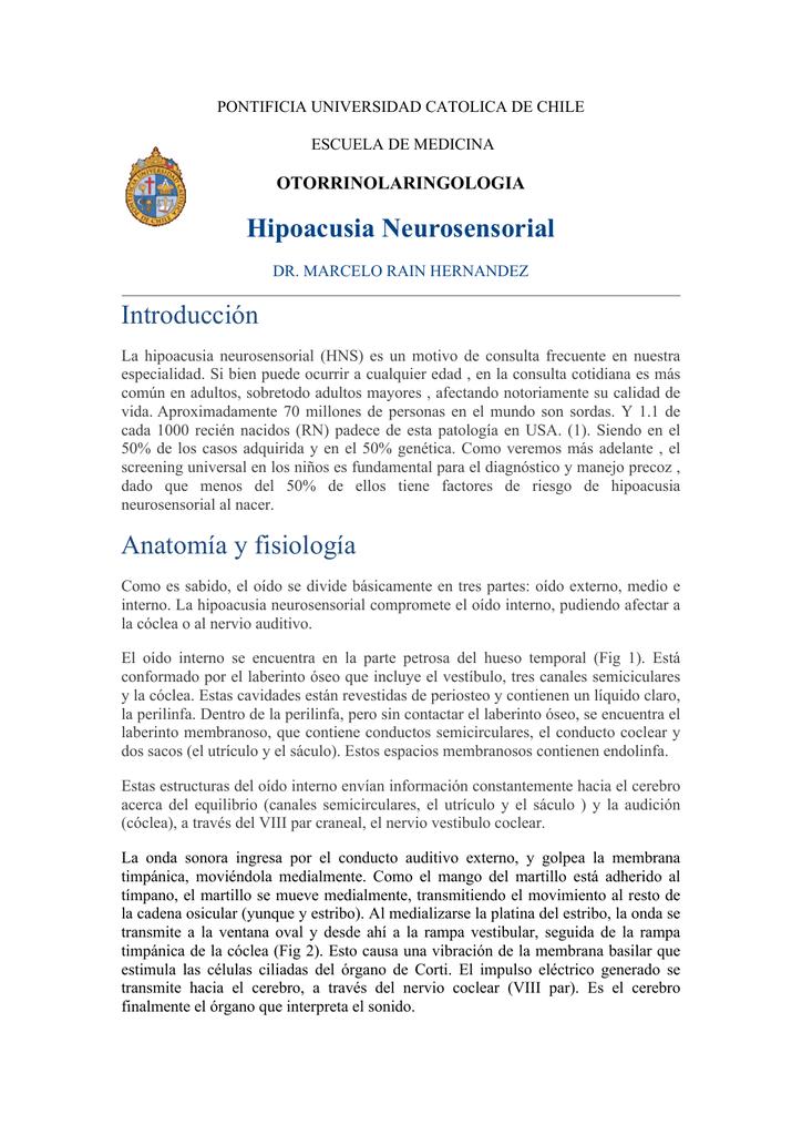 Dorable Anatomía En La Escuela De Medicina Adorno - Imágenes de ...