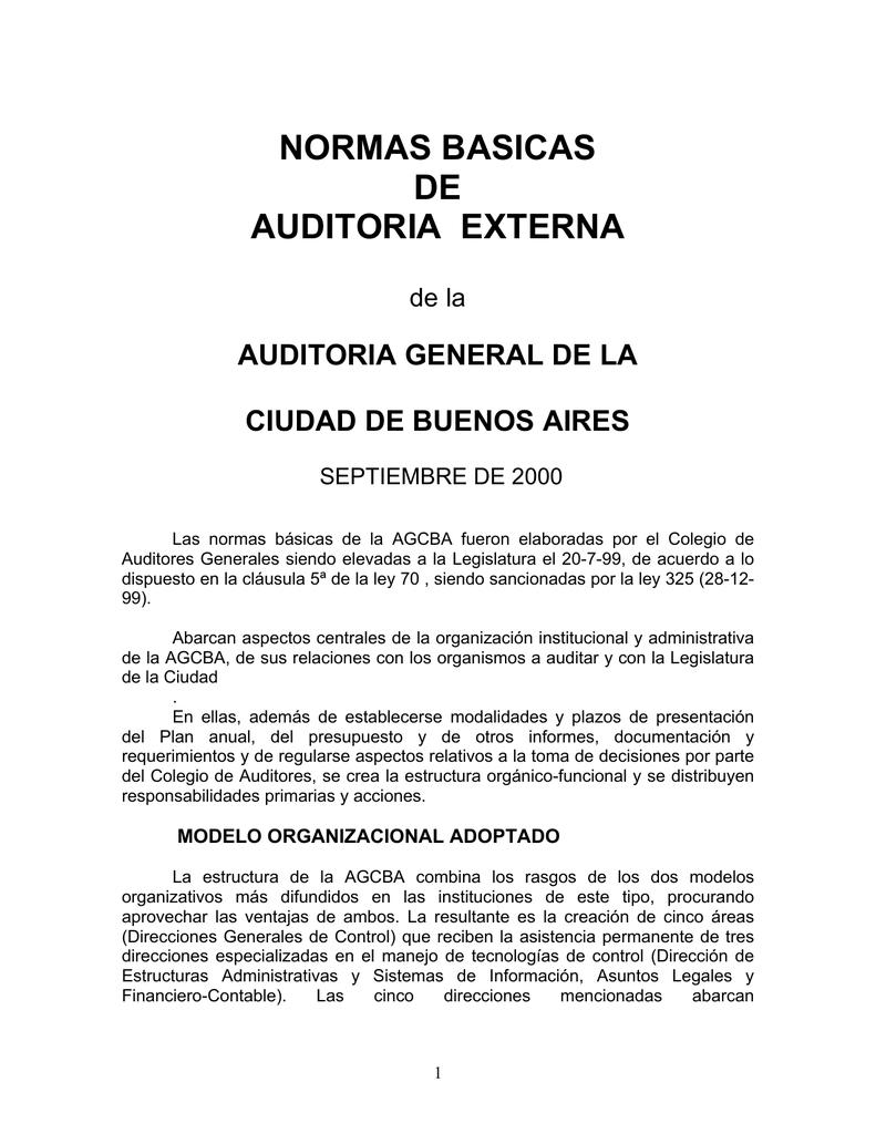 Normas Básicas De Auditoría Externa