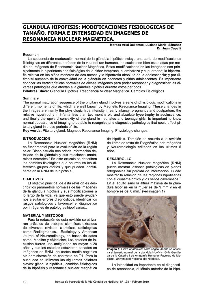 glandula hipofisis: modificaciones fisiologicas de tamaño
