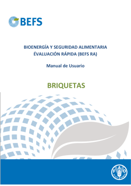 Briquettes_manual_es