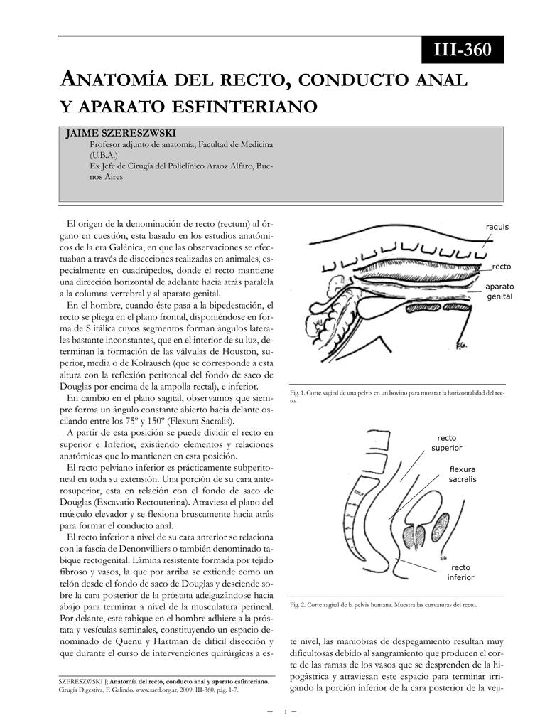 Anatomía del recto, conducto anal y aparato esfinteriano.