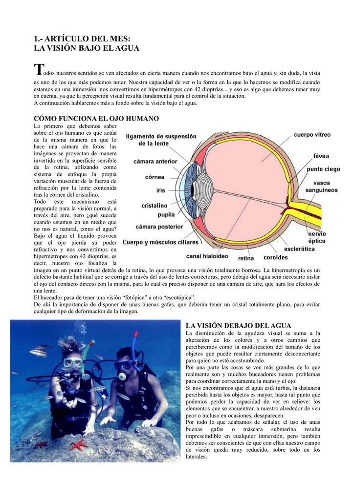 50baa98b91 la visión bajo el agua - Club de buceo Gran Azul