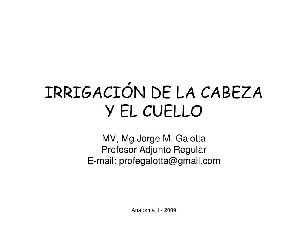 IRRIGACIÓN DE LA CABEZA Y EL CUELLO