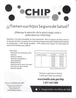 CHIP Application Spanish