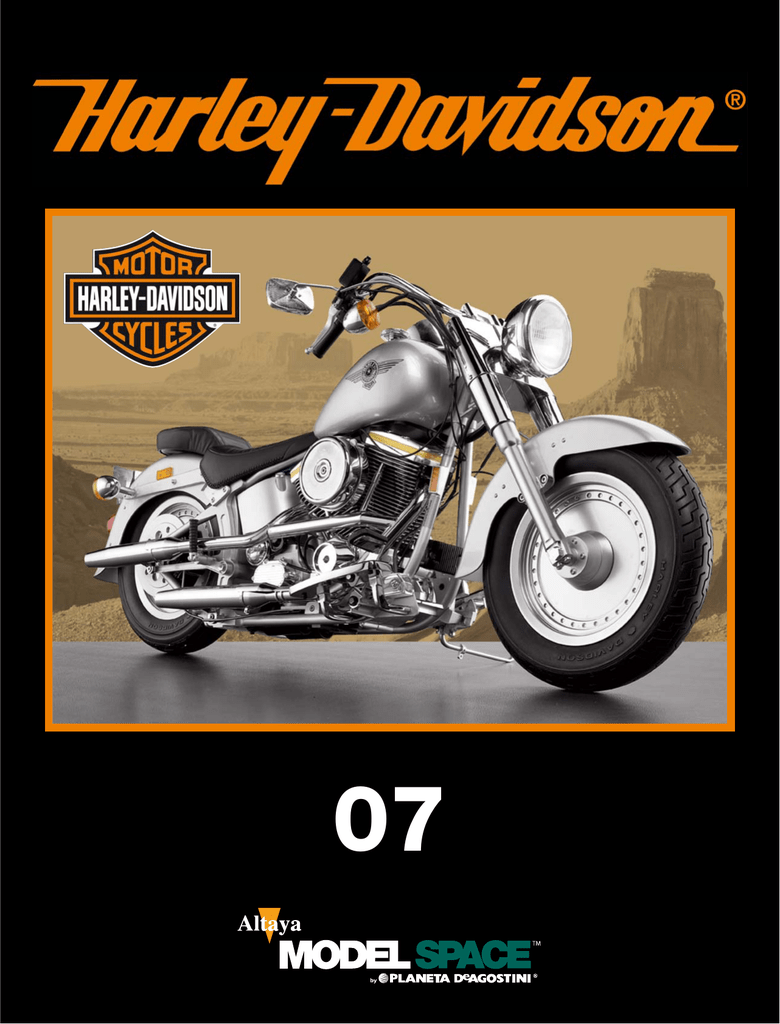 HARLEY-DAVIDSON Fat Boy Placa de matr/ícula