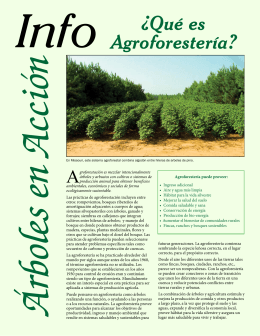 Info ¿Qué es Agroforestería? - National Agroforestry Center