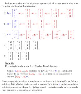 ESPACIOS GENERADOS EBOOK