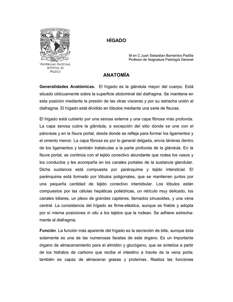 HÍGADO ANATOMÍA - Presentación del curso