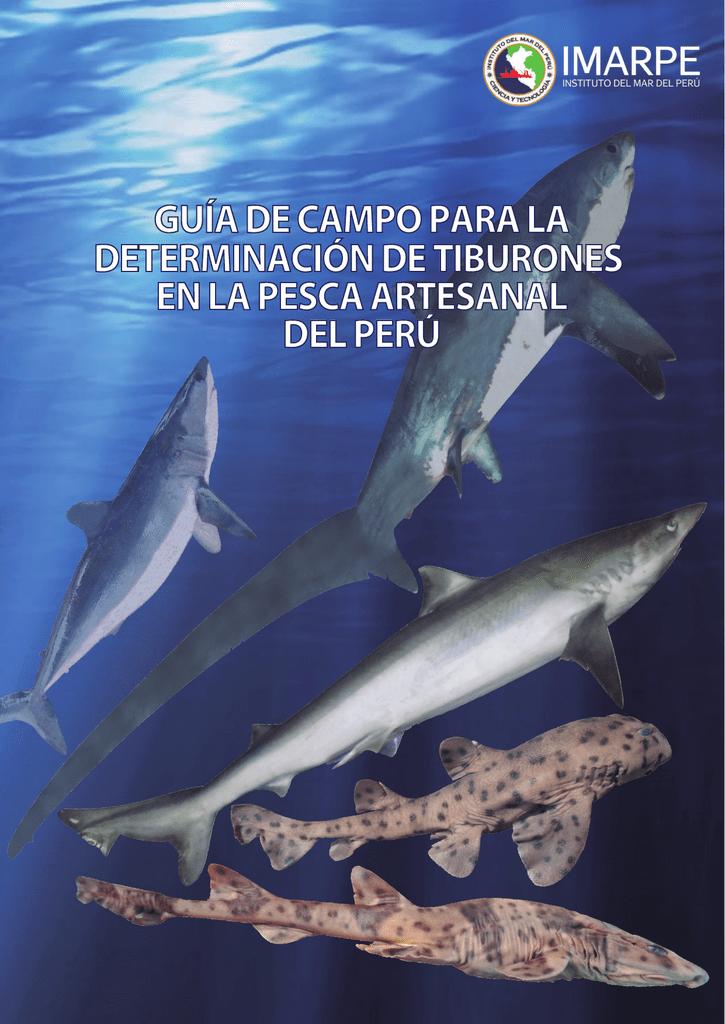 Guía de campo para la determinación de tiburones en la pesca