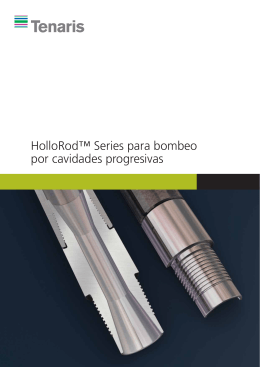 HolloRod™ Series for Progressive Cavity Pumping