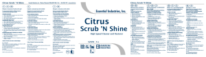 Citrus Scrub `N Shine - Essential Industries