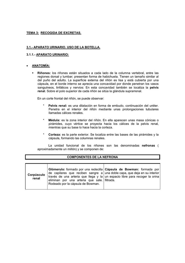 Tema 3: Recogidas de excretas