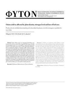Onion yield as affected by plant density, nitrogen level and loss of