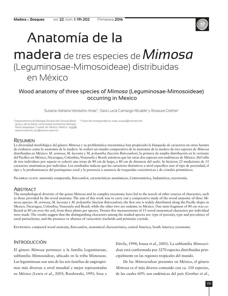 Anatomía de la madera de tres especies de Mimosa (Leguminosae