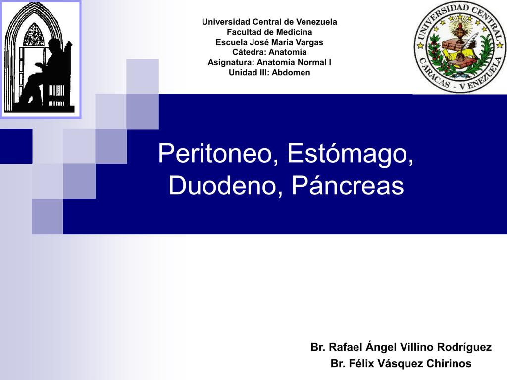 Peritoneo, Estómago, Duodeno, Páncreas