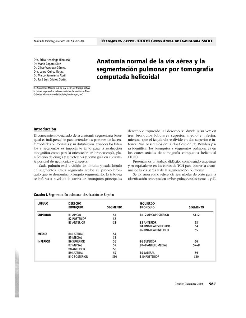Anatomía normal de la vía aérea y la segmentación pulmonar por