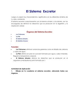 SESION DE APRENDIZAJE - Aparato Excretor