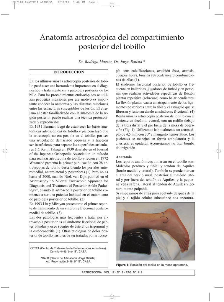 Anatomía artroscópica del compartimiento posterior del tobillo