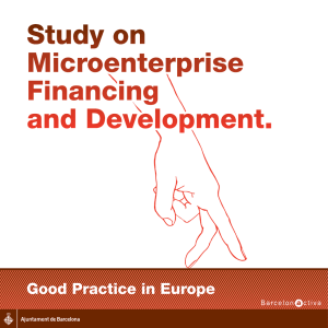 Study on Microenterprise Financing and