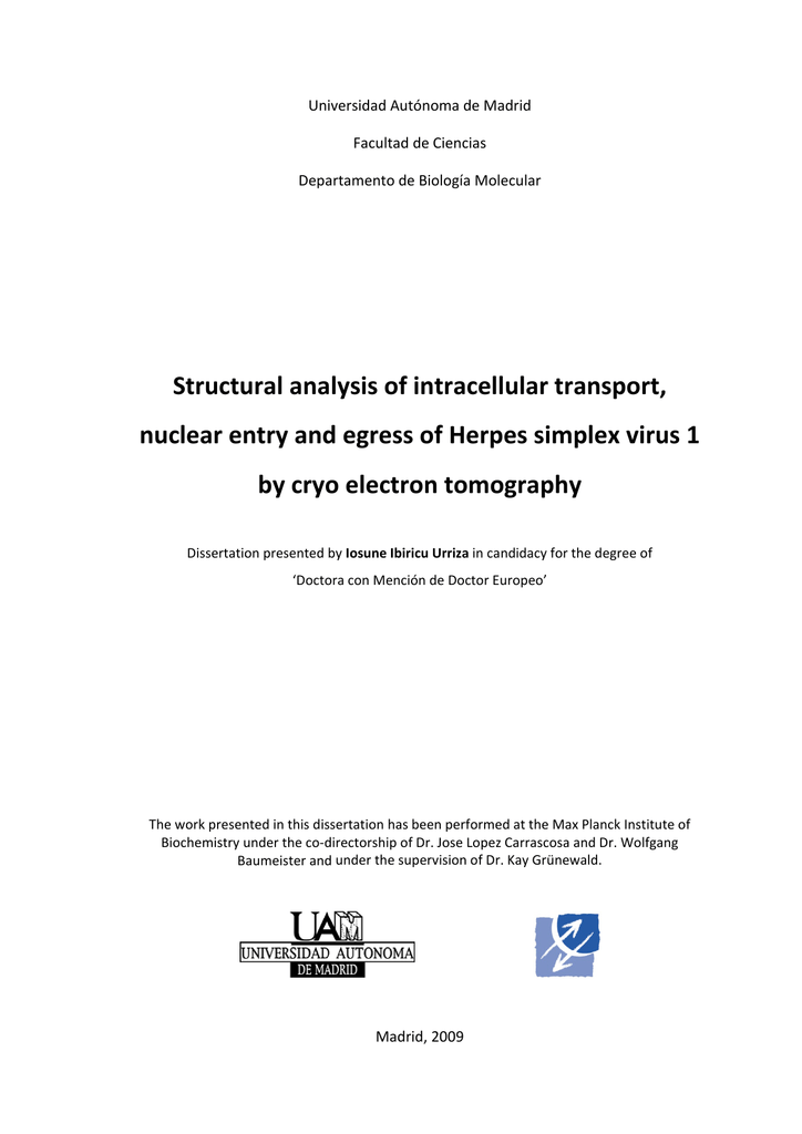 Structural Analysis Of Intracellular Transport Nuclear