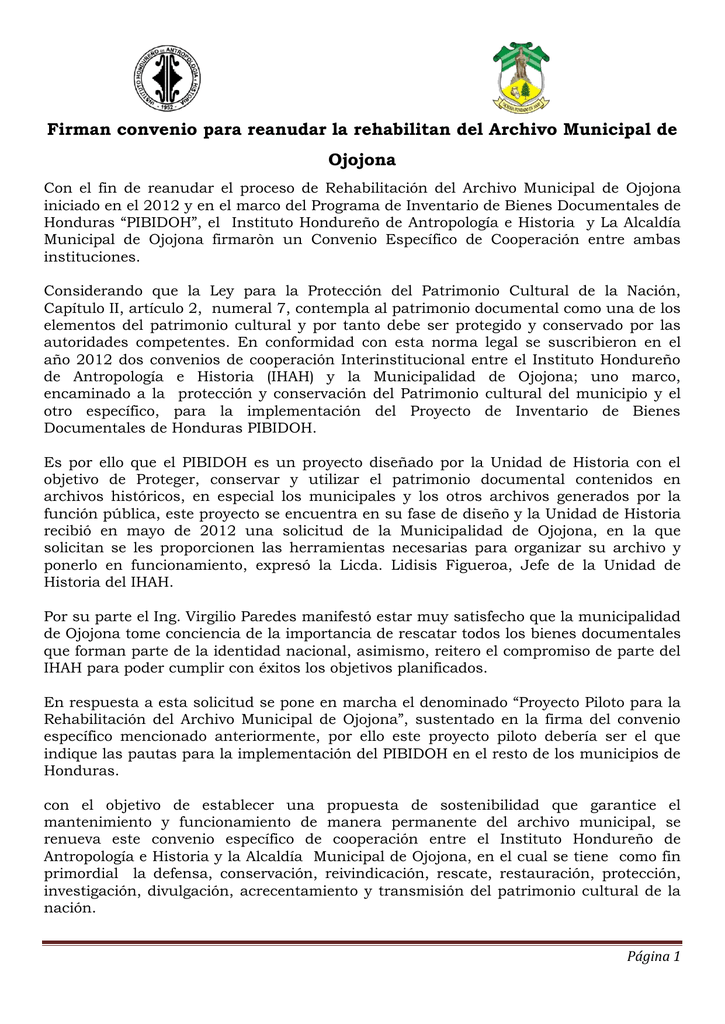 Excepcional Consejos Piloto Reanudar Componente - Colección De ...