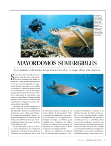 MAyORDOMOS SUMERGIBLES - Dive Butler International
