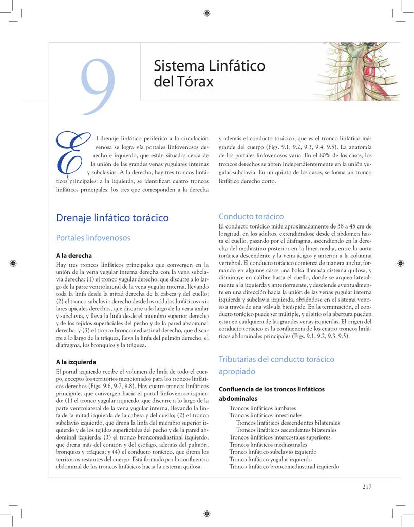 Sistema Linfático del Tórax