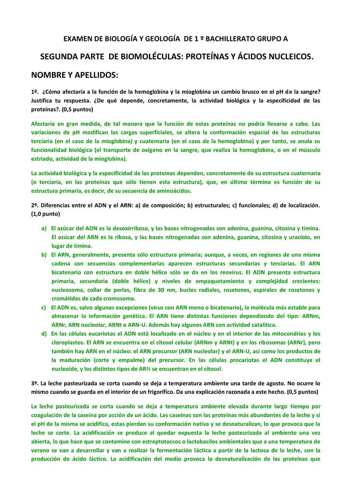 Examen De Bachillerato Proteínas Y ácidos