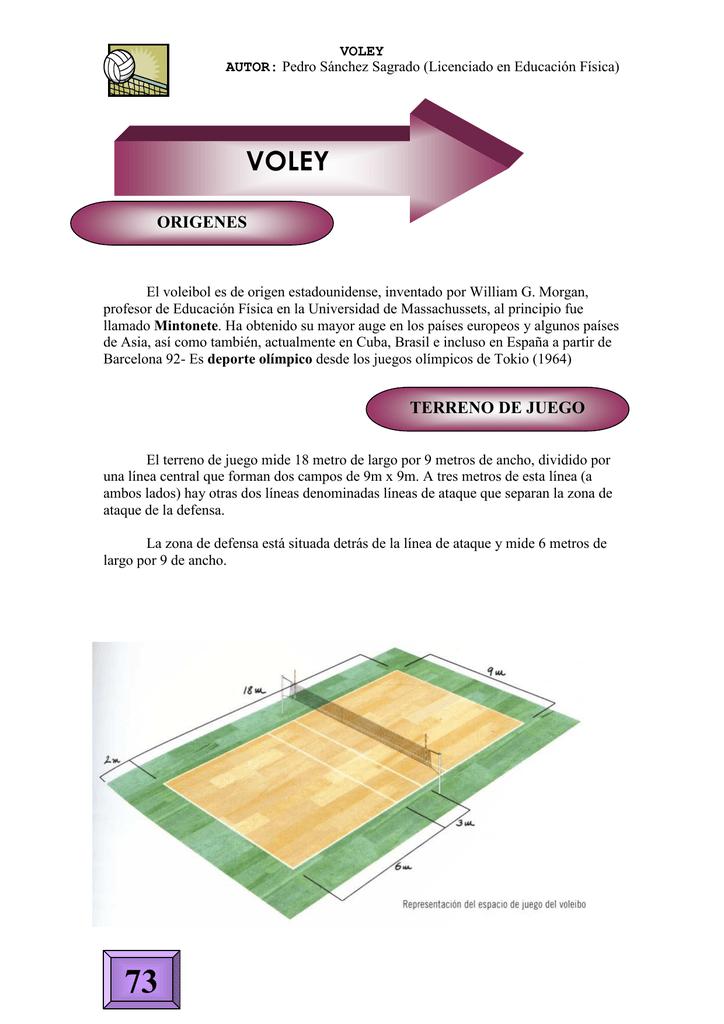 imagenes del terreno de juego del voleibol
