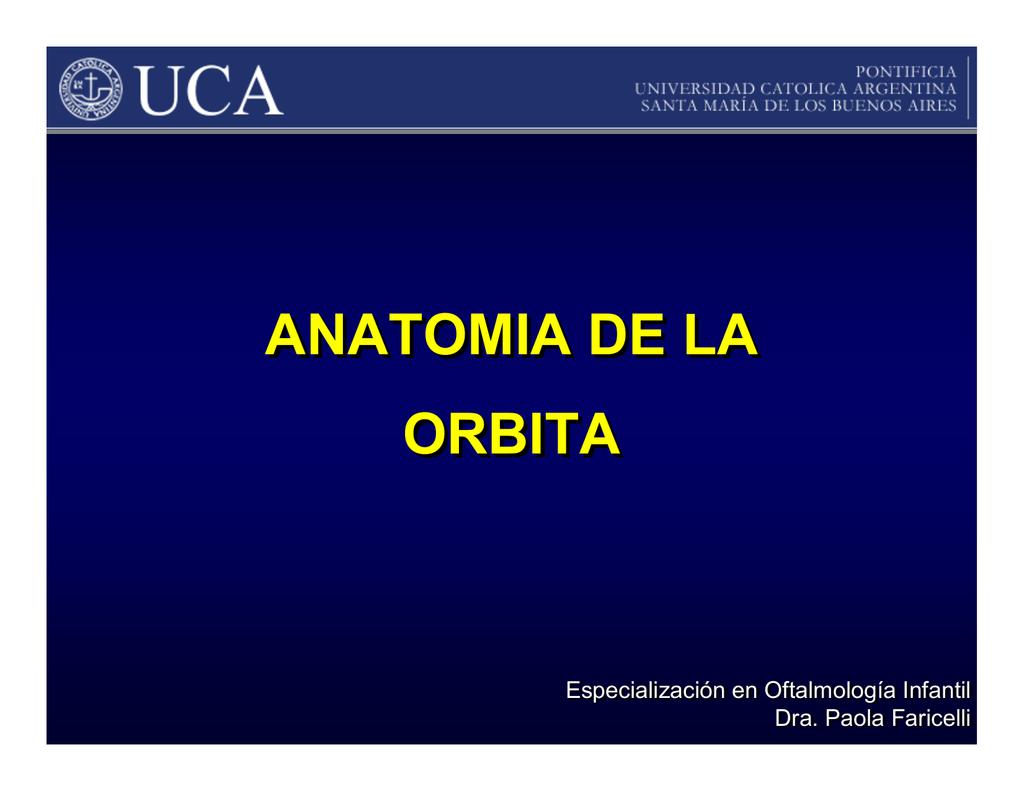 Lujo Anatomía órbita Mri Composición - Anatomía de Las Imágenesdel ...