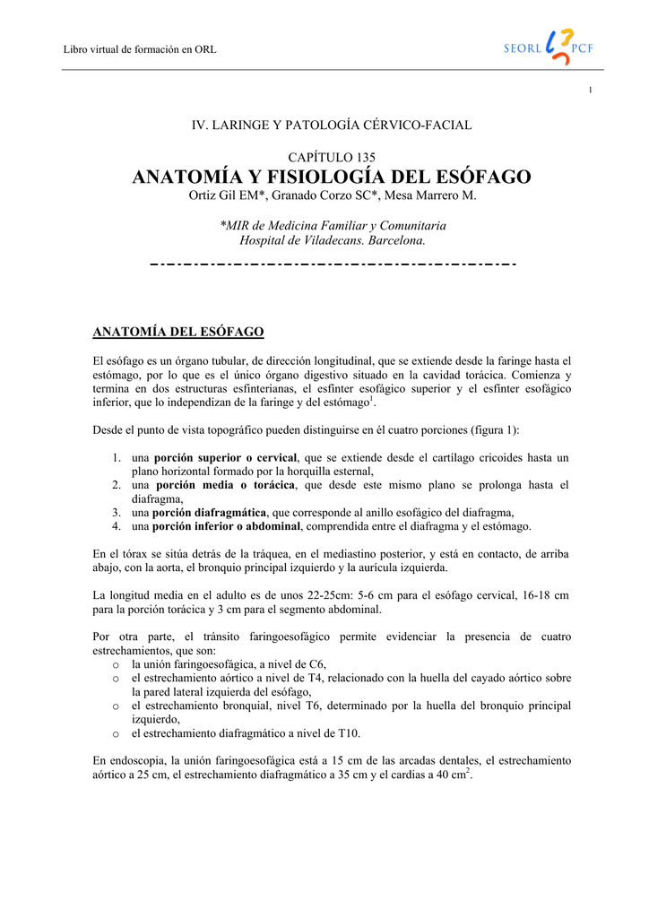 anatomía y fisiología del esófago