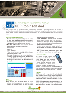 SDP Robinson do-IT